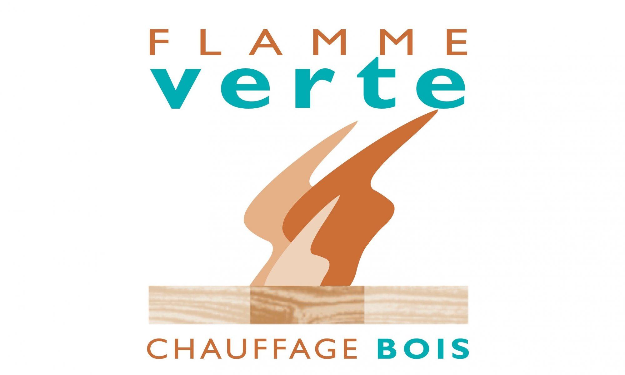Petit Logo Flamme Verte