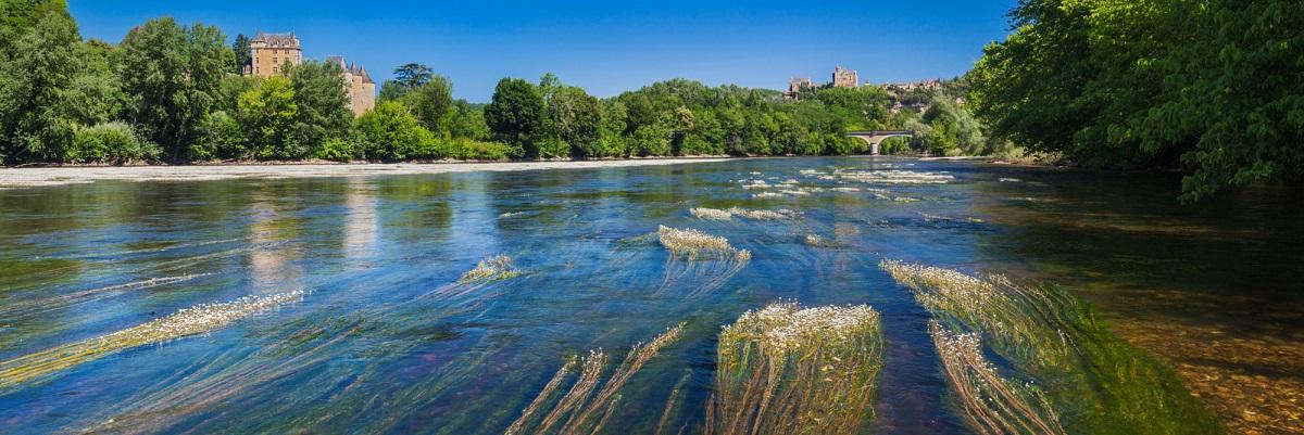 Herbiers à renoncules sur la Dordogne a Vézac avec les châteaux de Fayrac et de Beynac sur les coteaux ©Hervé Sentucq