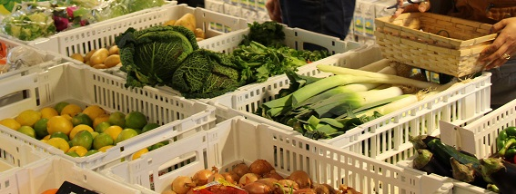 Permettre l'accès de tous à une alimentation durable et de qualité © GRAINE Aquitaine