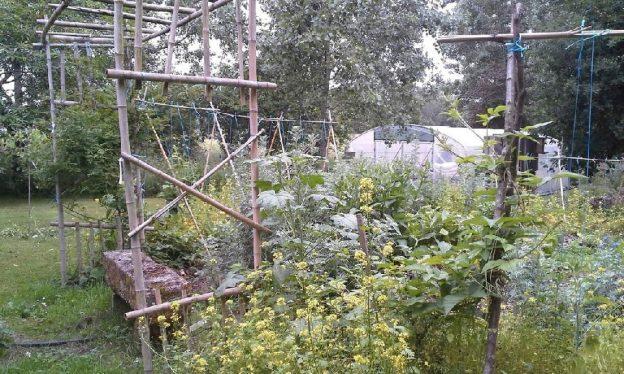 Le jardin rééquilibre, réoriente, et redonne des forces - Pascal Pennec © Jardin d'oreda