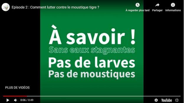 Deux courts épisodes sur la chaîne de Bordeaux Métropole © BxMétropole