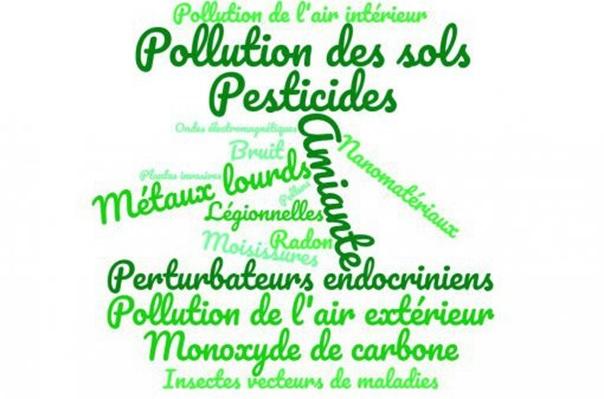 Nuage de mots sur la perception des 17 agents environnementaux © ARS NA