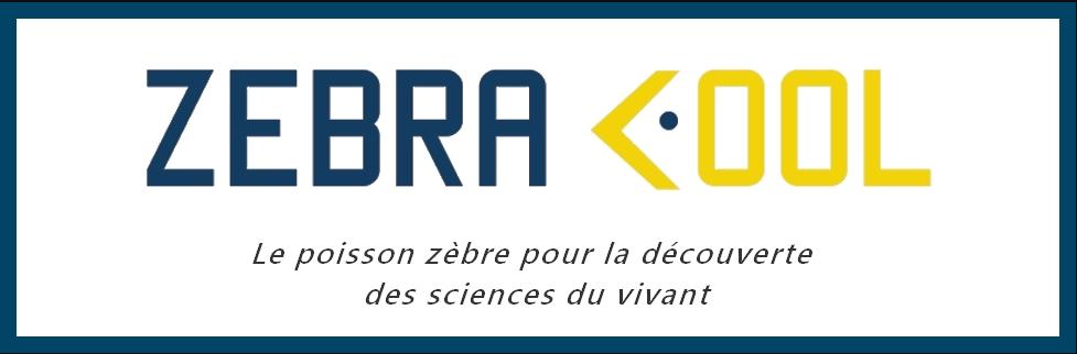 Logo ZebraCool