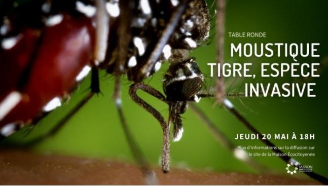 Le replay de la conférence est disponible en ligne © MEC de Bordeaux